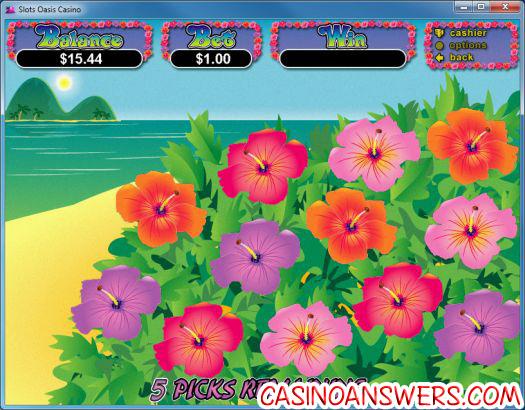 slots-oasis-casino-blog-10-d