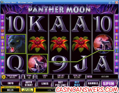 panther moon video slot 1