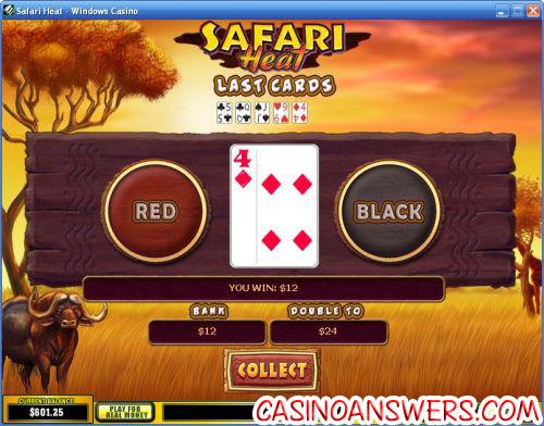 safari heat video slot bonus game