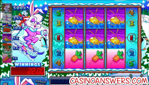 ski bunny fruit machine payout