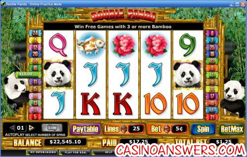 double panda video slot
