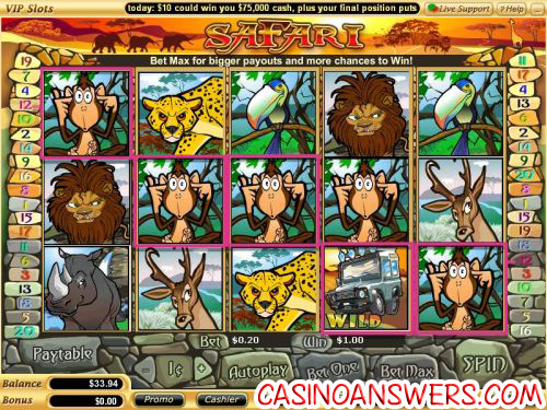 safari video slot