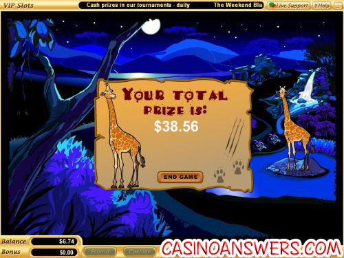 safari bonus casino game