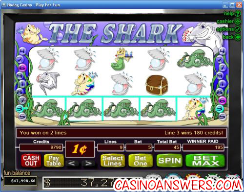the shark rtg video slot