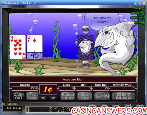 the shark casino game