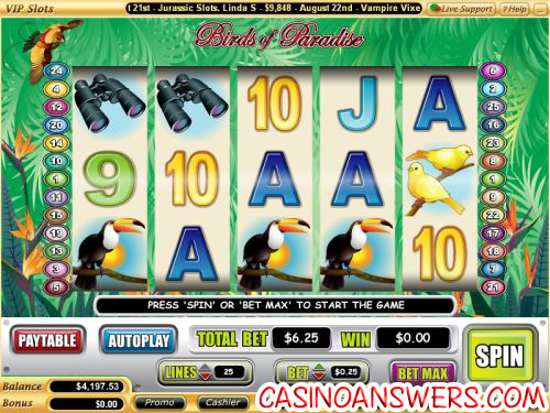 birds of paradise video slot