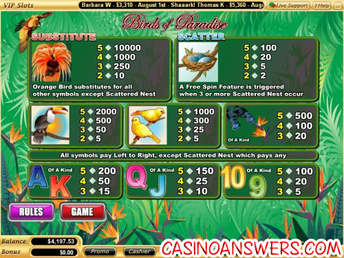 birds of paradise flash game