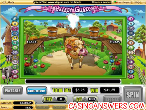 hurdy gurdy video slot bonus game