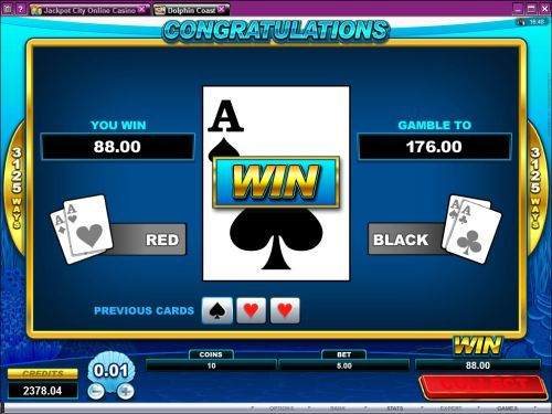 dolphin coast casino game
