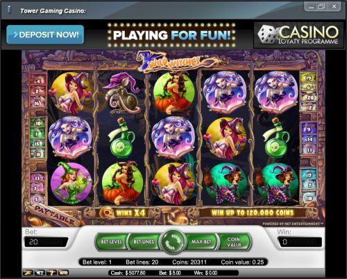 wild witches video slot