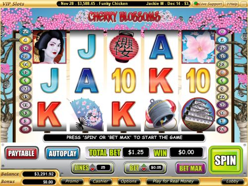 cherry blossoms video slot
