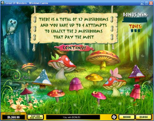 forest of wonders flash game
