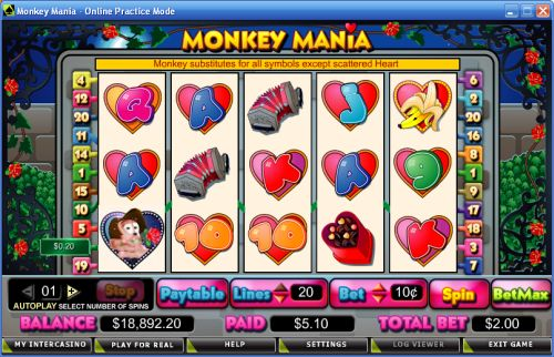 monkey mania video slot