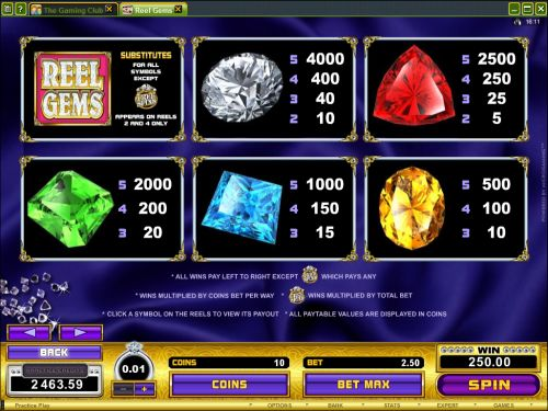 reel gems microgaming flash game