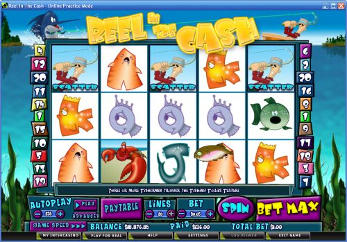 reel in the cash video slot