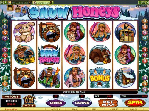 snow honeys video slot