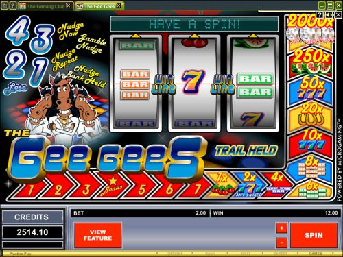 the gee gees fruit machine