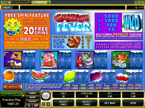 cabin fever flash bonus game