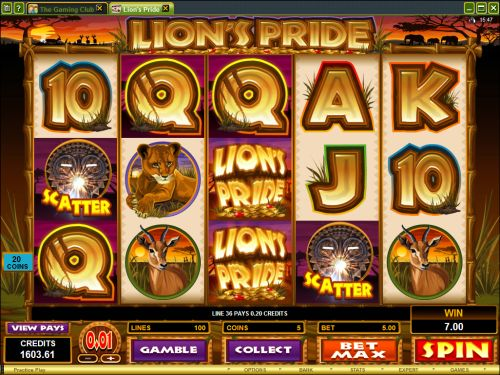 King of Africa is a lion of the slots. Play at Casumo