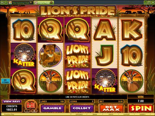 lions pride slot