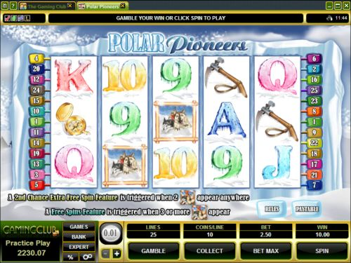 polar pioneers video slot
