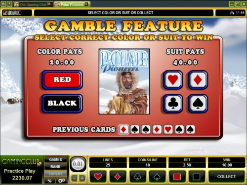 polar pioneers casino game