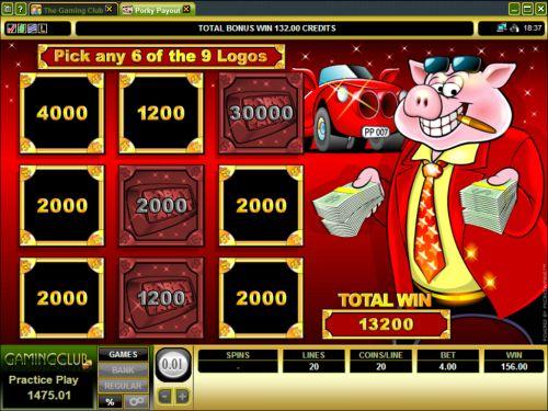 porky payout video slot