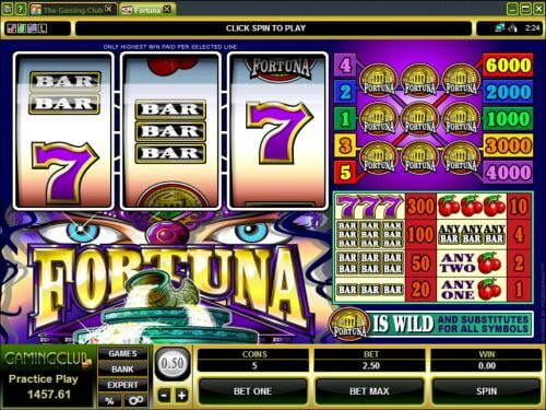 fortuna slot machine